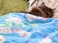 Марти спит под одеялом