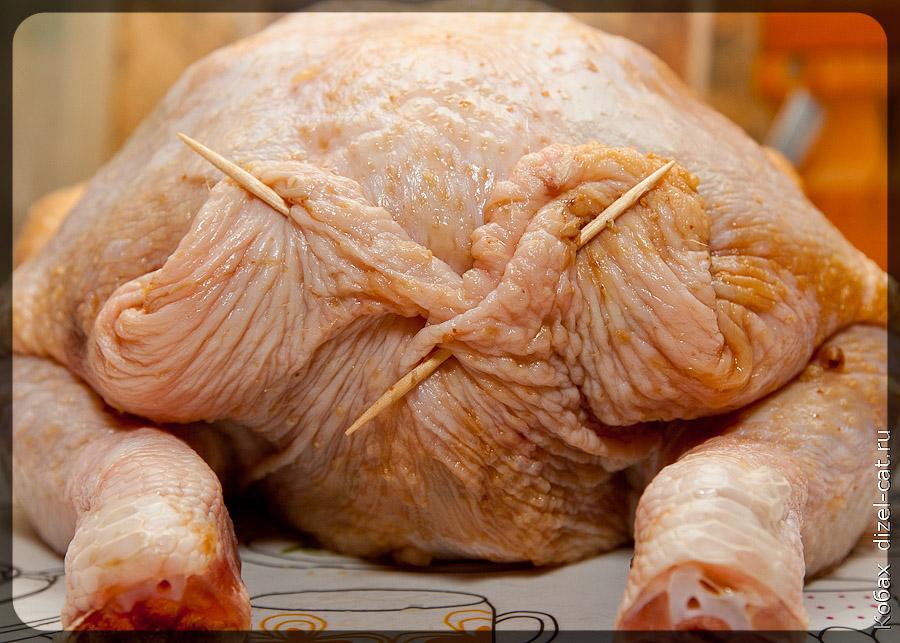 куриная жопа на ногах фото