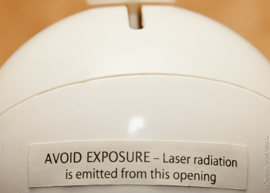 лазер для кота