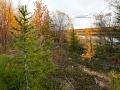 Осень в Якутии